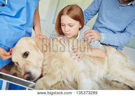 Worried about pet