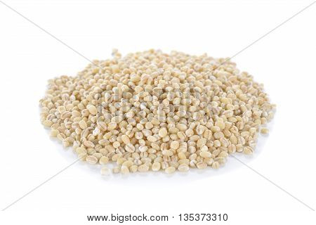 Uncooked barley grain seeds on white background
