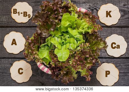 Fresh crispy lettuce and Lollo Rossa. Source of vitamins A C group B rich in potassium calcium phosphorus magnesium. Used in dietary health and vegetarian nutrition detox