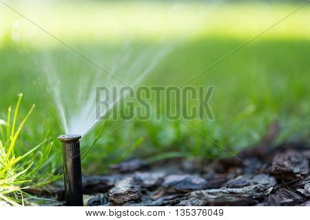 Irrigation system in function on home lawn