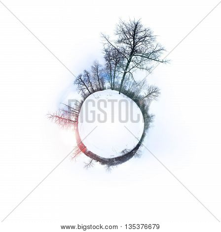 Landscape Photo of Winter Forest Original Scene with Copy Space in center