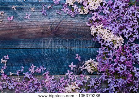 Lilac Flowers Decorative Frame