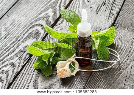 Mint essential oil in small brown bottle and pendant aromatic fresh mint on a dark wooden table