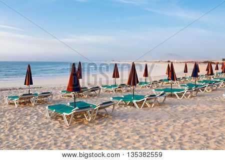 Row of sunbeds and parasols on a beach