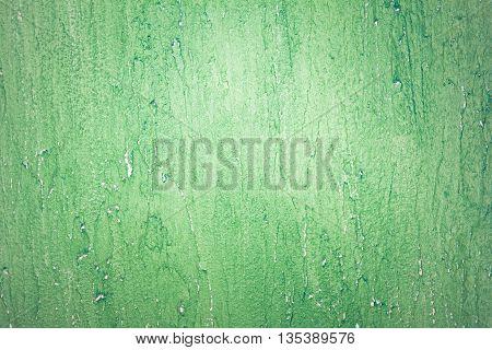 Green Design Vintage Grunge Wall Plaster Texture