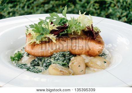Salmon with steamed spinach and creamy potatoes