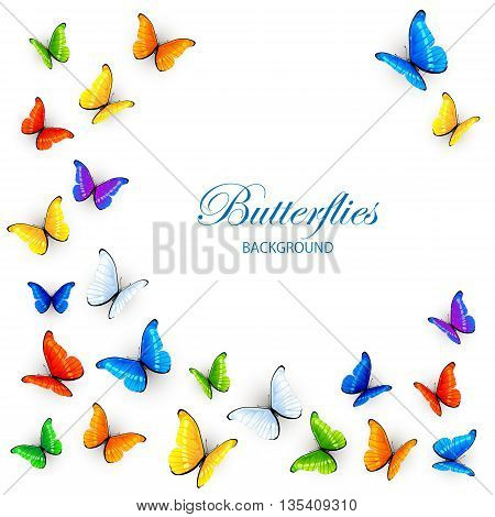 Set of colored butterflies, isolated on white background, illustration.