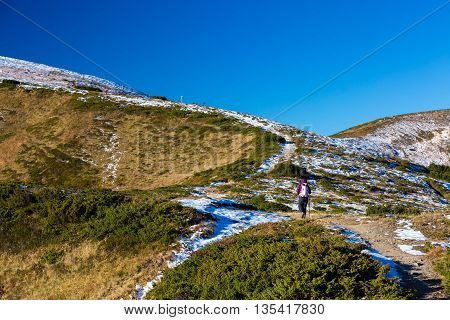 Hiker Climbs Up on Trail Towards High Mountain Ridge Carrying Backpack Grass Blue Sky and some Snow in Tops