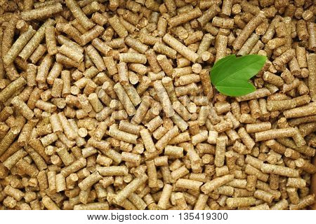Green leaf on solid wooden pellets background