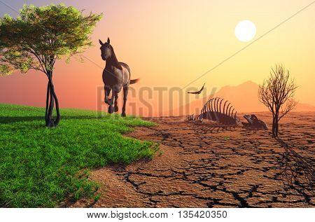 A horse on the grass near the desert.3d render