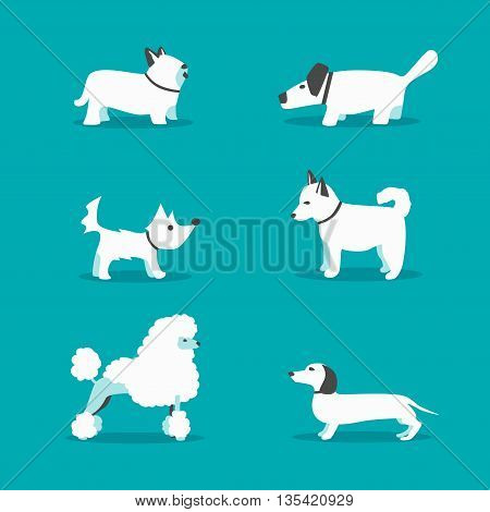 Set of dogs. Cartoon vector illustration. Sale of purebred dogs. Isolated background. Flat style. Domesticated dogs