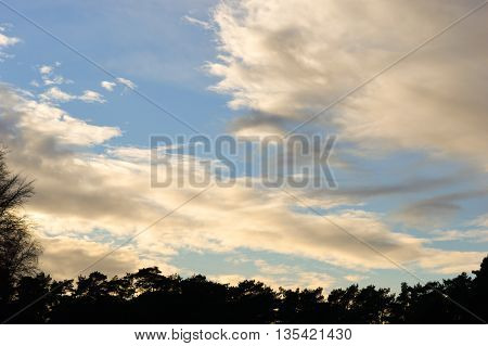 Blue sky with some clouds and a line of trees silhouette at the bottom