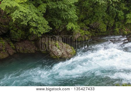 mountain Daiya river in green summer forest with rocky shore in Japan