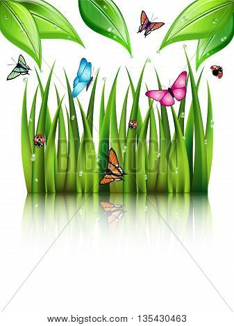Flying butterflies by the grass and leaves with theirs reflection in the water. Vector illustration.