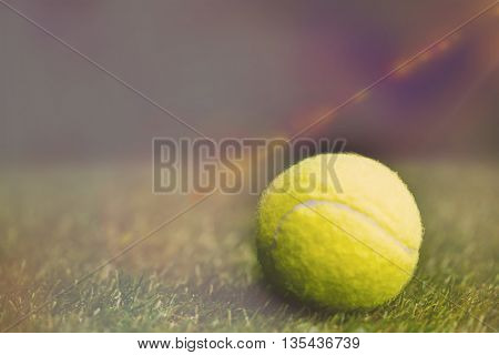 Close up of tennis ball on the grass in a sport field