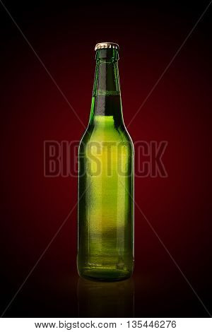 Cold Wet Beer Bottle