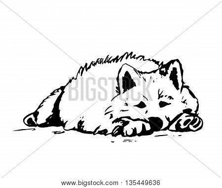 The graphic image of the dog on white background. Drawing of dog from the black lines the dog lying on the floor. Vector illustration