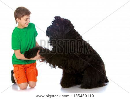 The young man holds the paw of a black dog-Isolated on white background