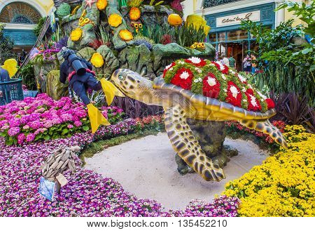 LAS VEGAS - MAY 21 : Summer season in Bellagio Hotel Conservatory & Botanical Gardens on May 21 2016 in Las Vegas. There are five seasonal themes that the Conservatory undergoes each year.