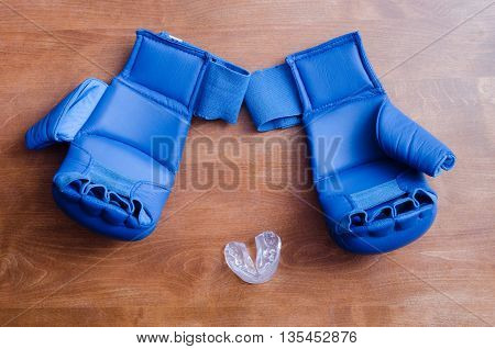 gloves for martial arts and boxing cap