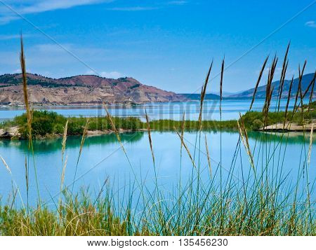 stunning view of a still calm lake with green trees and blue water ideal for a nature backdrop or background for copy space and text.