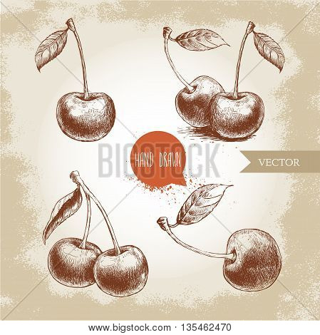 Hand drawn cherry set isolated on vintage background.Retro sketch style vector eco food illustration