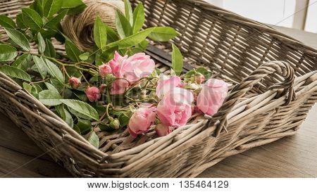 Fresh Roses In Wicker Basket