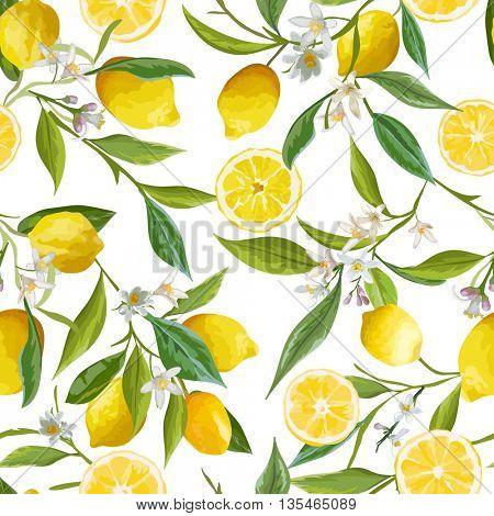 Seamless Pattern. Lemon Fruits Background. Floral Pattern. Flowers, Leaves, Lemons Background. Vector Background.