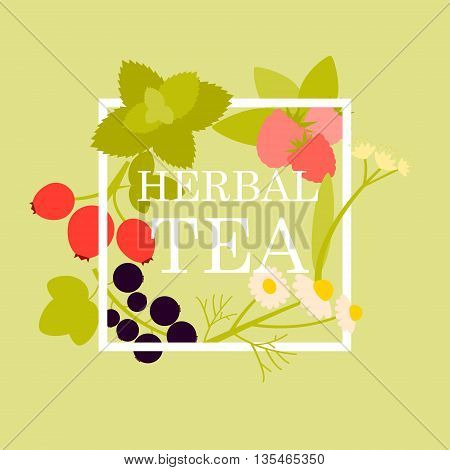 Poster herbal tea with raspberry, chamomile, mint, linden, currant and rosehip. Vector illustration