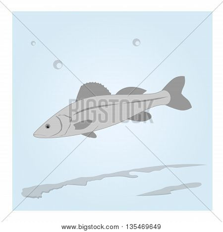 Fish in the water. Vector illustration opacity