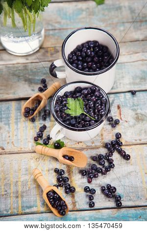 fresh bilberry with green parsley in white cups