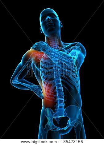 3d rendered, medically accurate 3d illustration of highlighted parts of the human body