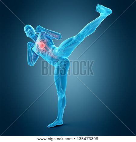 3d rendered, medically accurate 3d illustration of a kick boxing pose