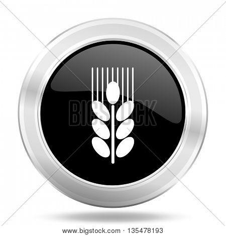grain black icon, metallic design internet button, web and mobile app illustration