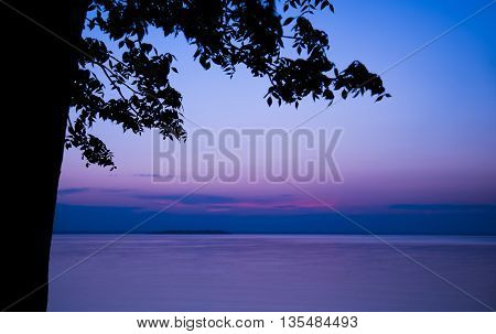 Silhouette of a tree against a purple sky during blue hour with a view of the lake at the cottage