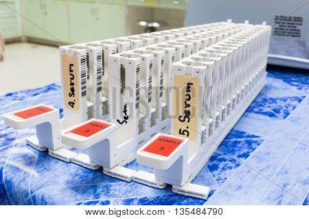 Blank blood test tubes rack in laboratory