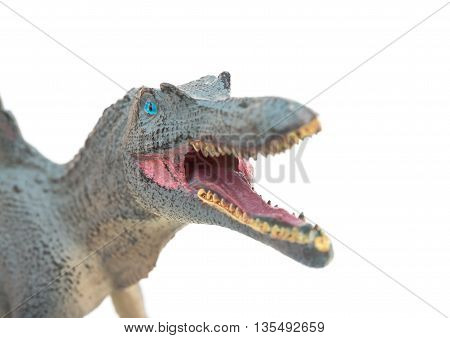 close up of grey spinosaurus toys head on a white background