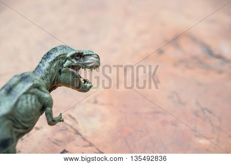 tyrannosaurus toy on rock with copy space