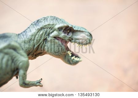 close up of tyrannosaurus toy head on rock
