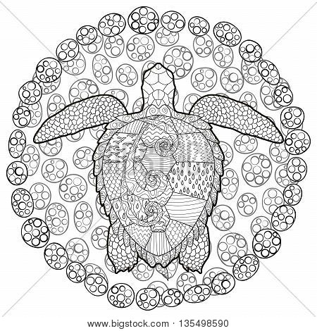 Hand drawn swimming turtle with high details for anti stress coloring page, illustration in zen doodle style. Sketch for tattoo, poster, print, t-shirt in zen tangle style. Vector.