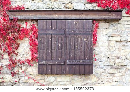 wooden shutters on stone wall background with autumn leaves