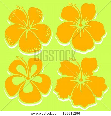 Hibiscus Collection in yellow color. Vector illustration