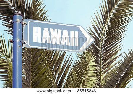 Hawaii vacation to tropical islands concept with palm trees
