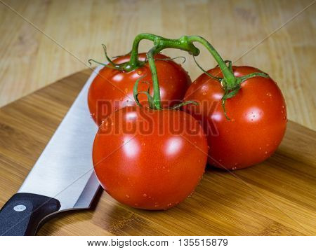 Bunch of fresh picked tomatoes, ready for slicing on the cutting board with a knife.
