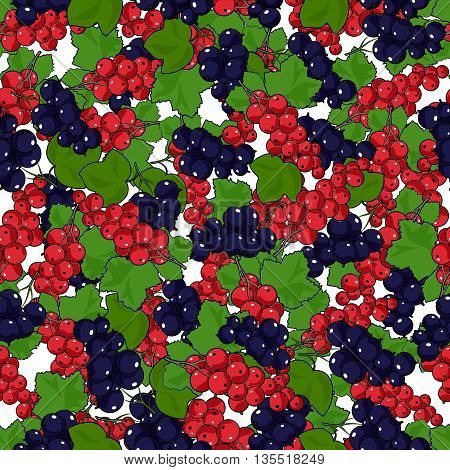 Seamless Redcurrant and Blackcurrant Pattern, Fruit Pattern , Berry Currant , Vector Illustration