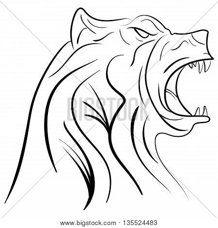 Vector pen and ink hand drawn illustration of a bear head portrait isolated on white background. Bear tattoo ink sketch
