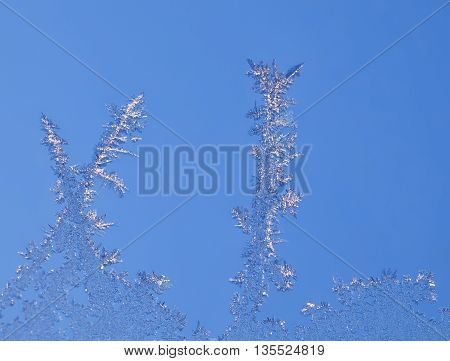 Natural Frosty Tracery