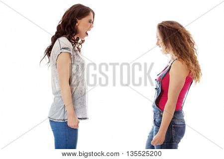 Two aggressive women screaming to each otcher