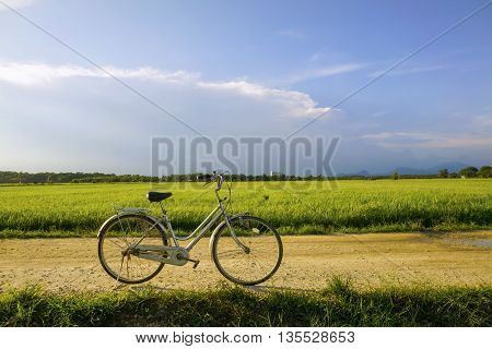 Old vintage bicycle with dramatic blue sky and paddy field at background