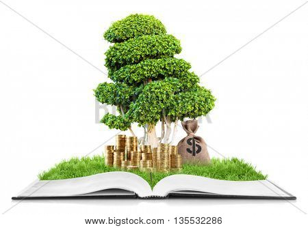 Book with green tree in bag and dollar sign isolated on white